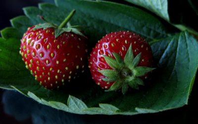 Rosige Erdbeer-Vinaigrette